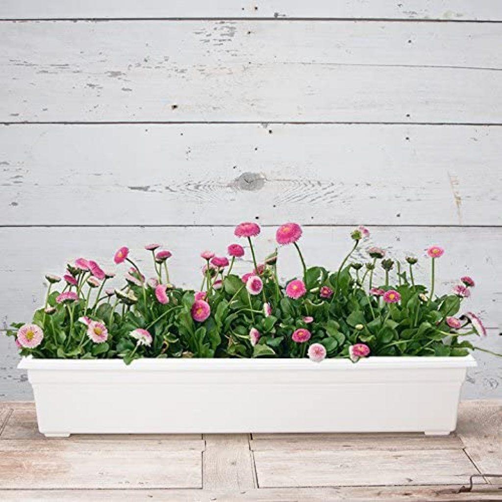 Countryside Flower Box Planter